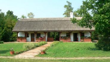 The Exhibition Ward of the Csabai Homestead and History of Grain