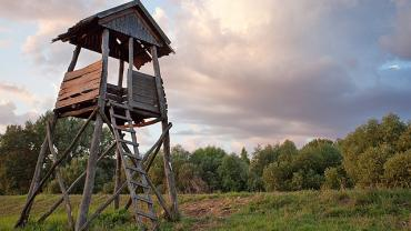 Hunting and Bird Watching Blind in Torzsás-zug